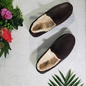 UGG Ascot brown Sheepskin Men's shoes size 13